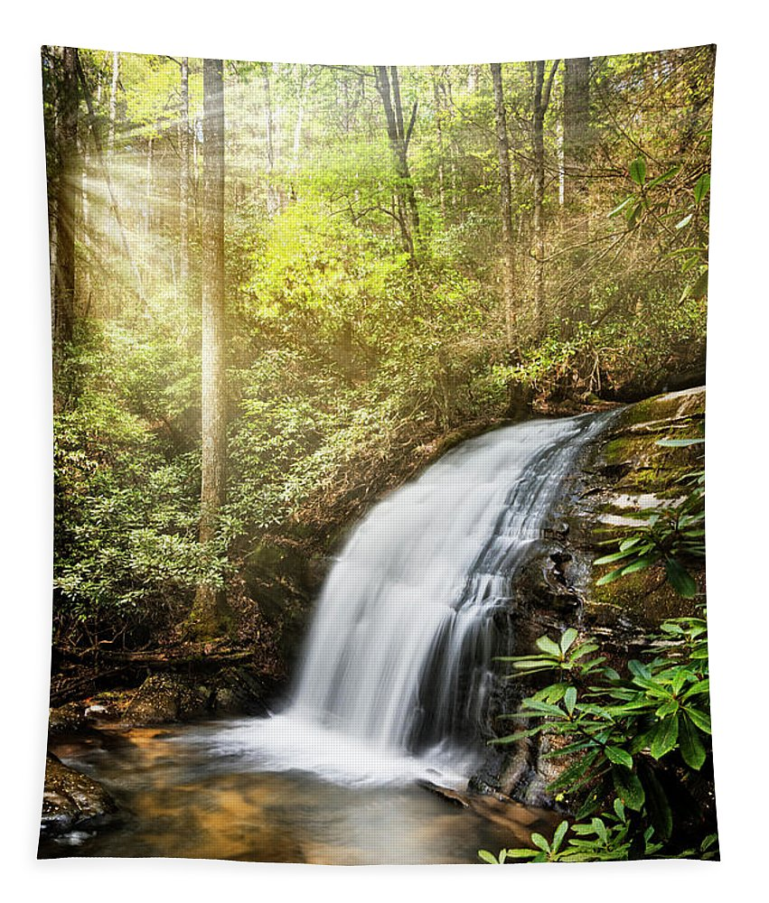 Appalachia Tapestry featuring the photograph Awakening In The Forest by Debra and Dave Vanderlaan