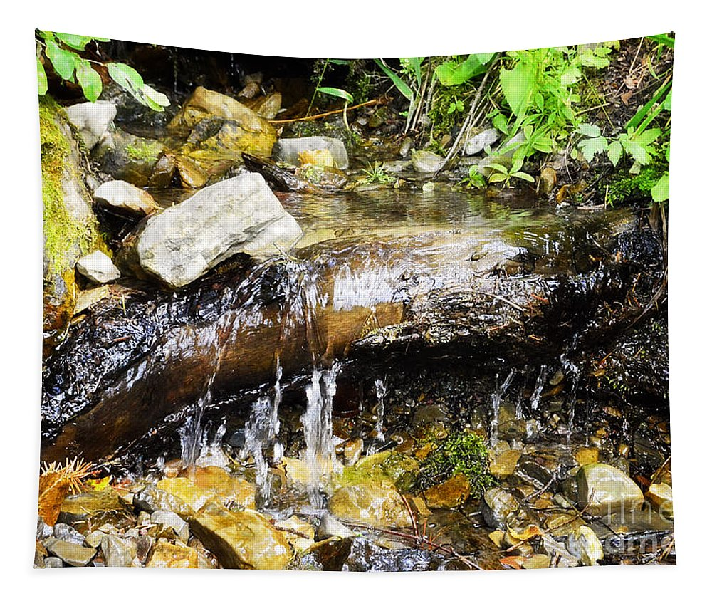 Water Tapestry featuring the photograph Babbling Brook by Janie Johnson