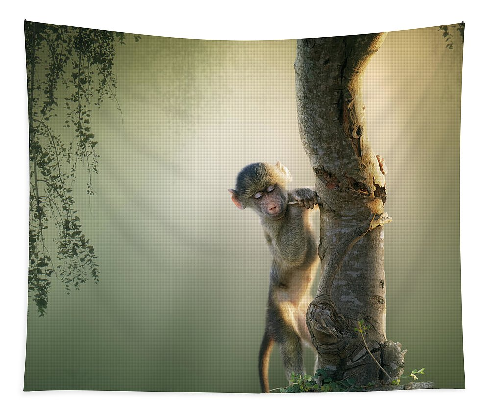 Baboon Tapestry featuring the photograph Baby Baboon In Tree by Johan Swanepoel