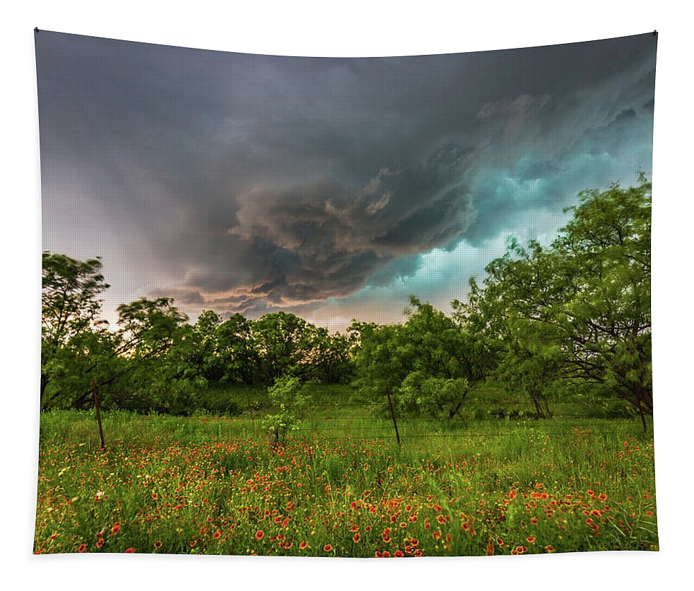Storm Tapestry featuring the photograph Back To Life - Spring Returns To Western Texas by Southern Plains Photography