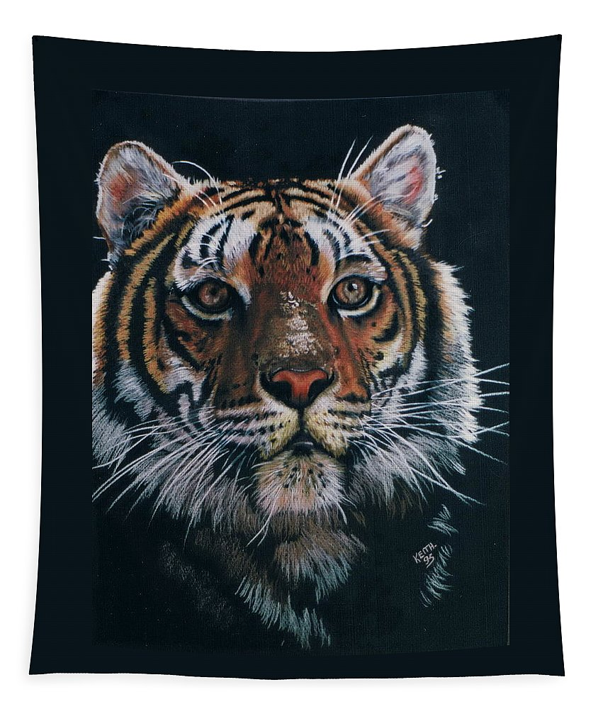 Tiger Tapestry featuring the drawing Backlit Tiger by Barbara Keith