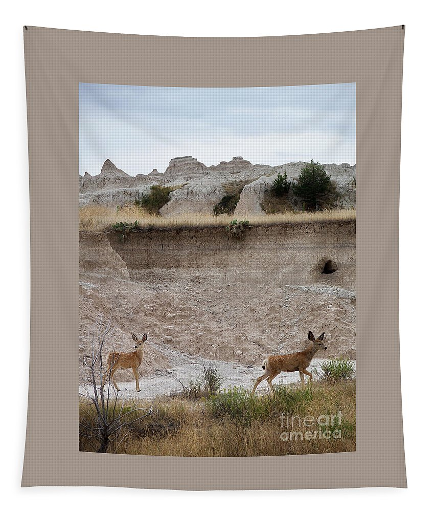 Badlands Tapestry featuring the photograph Badlands Deer Sd by Tommy Anderson