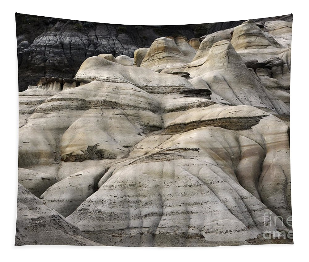 Drumheller Tapestry featuring the photograph Badlands Drumheller Alberta Canada 2 by Bob Christopher