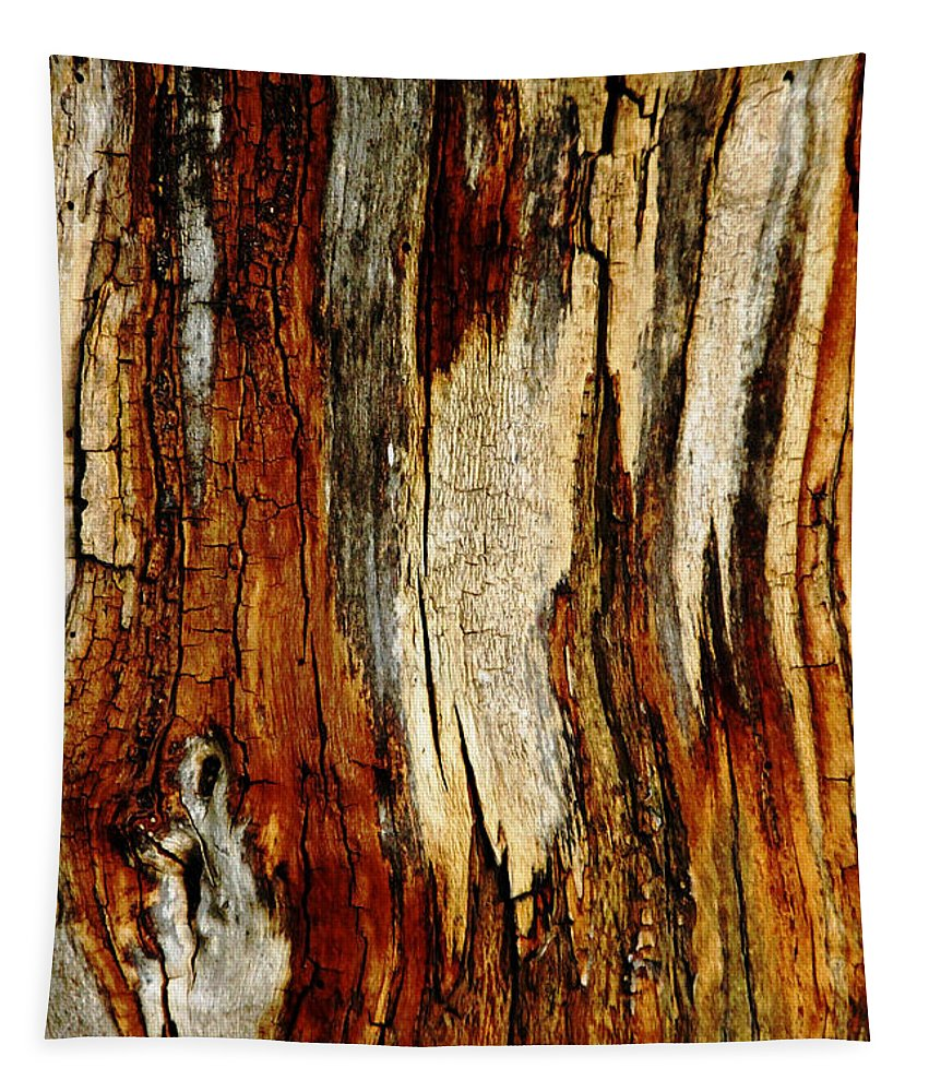 Bark Abstract Tapestry featuring the photograph Bark Abstract by Debbie Oppermann