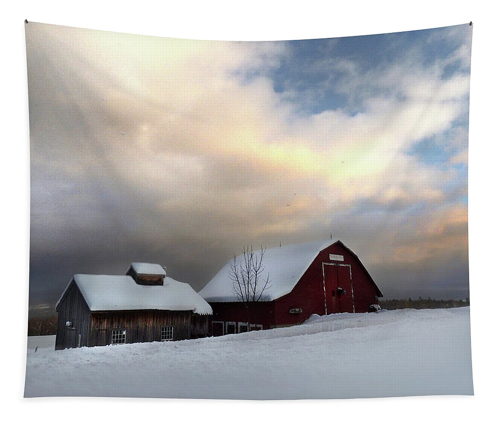 Barn Tapestry featuring the photograph Barn In Solitude by Nancy Griswold