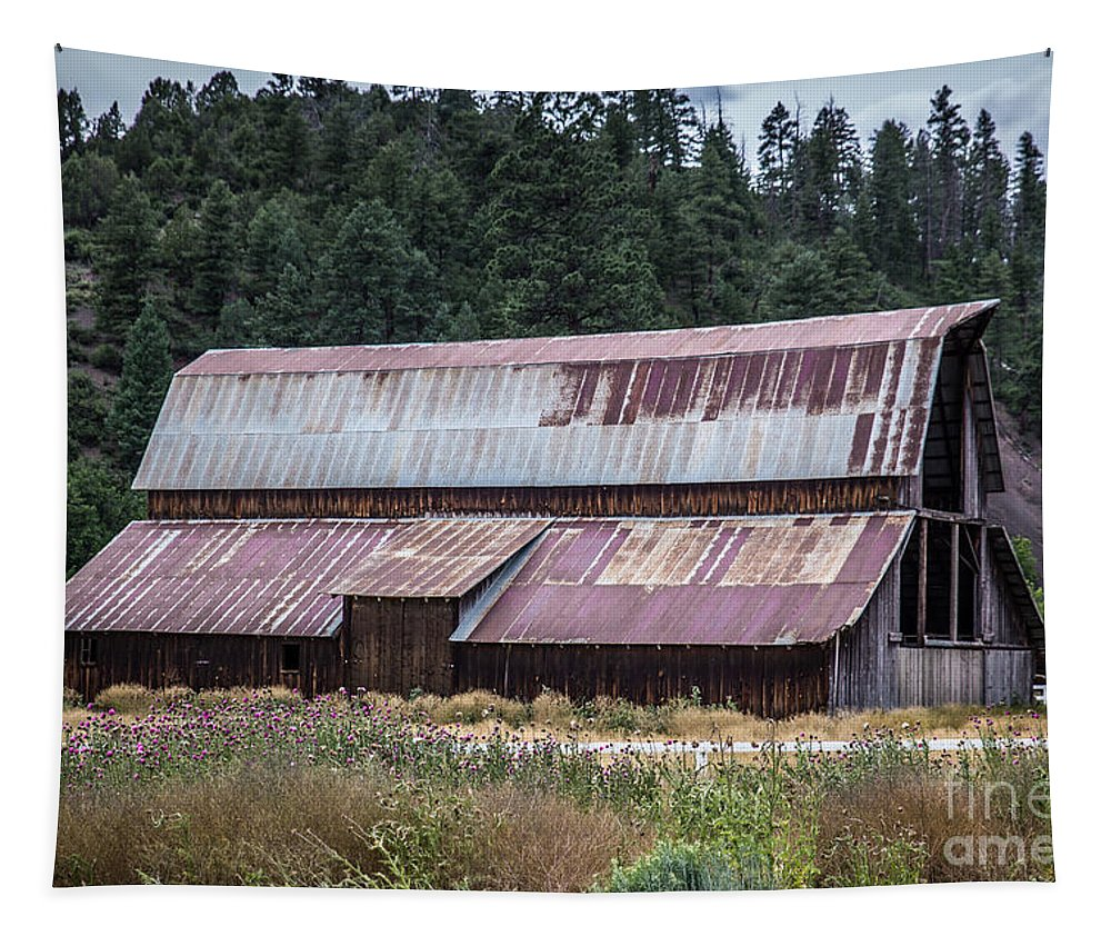 Barn Tapestry featuring the photograph A Colorado Barn In Summer by Lynn Sprowl