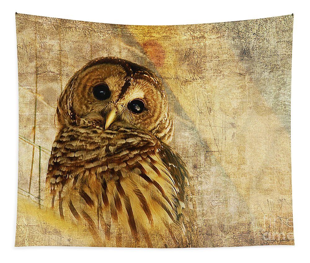 Owl Tapestry featuring the photograph Barred Owl by Lois Bryan