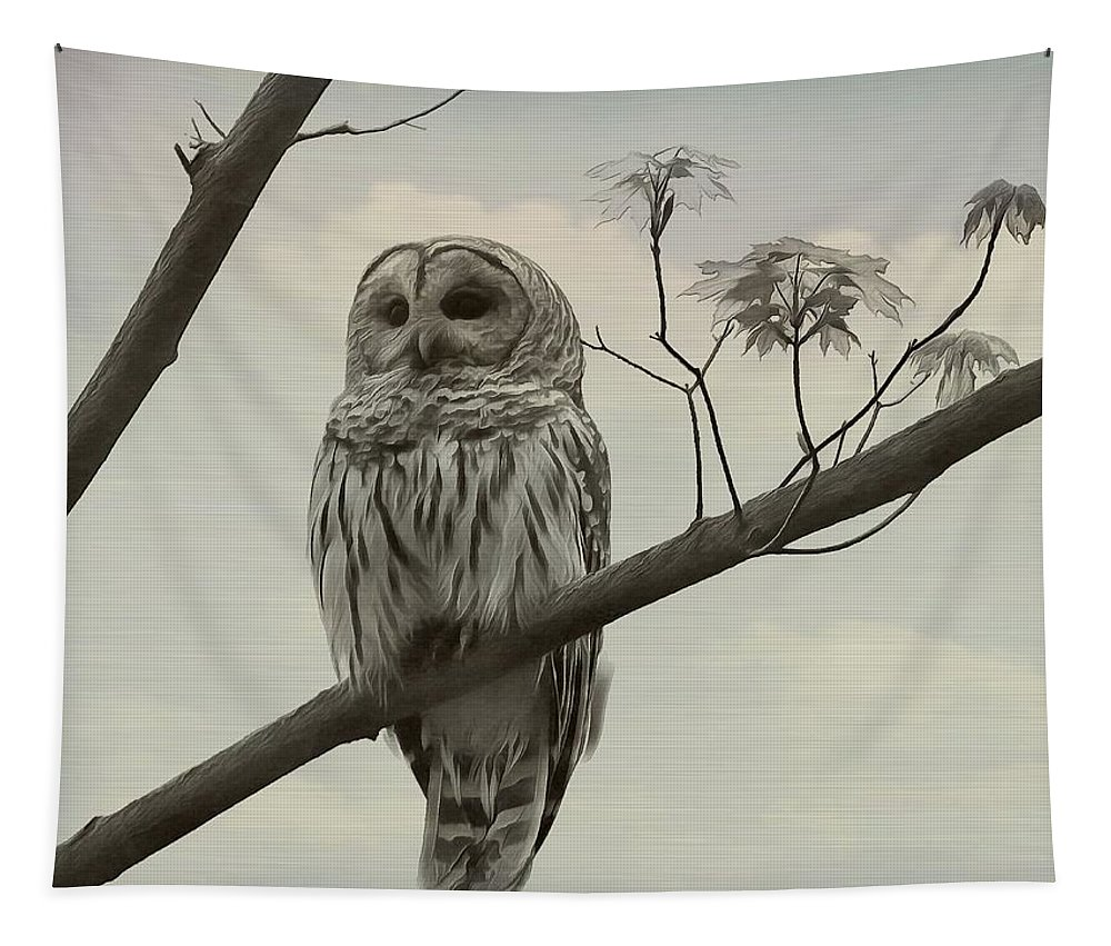 Barred Owl On A Tree Tapestry featuring the mixed media Barred Owl On A Tree by Dan Sproul