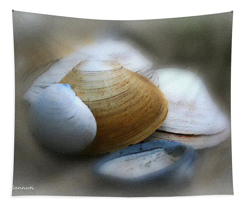 Nature Tapestry featuring the photograph Beach Shells by Linda Sannuti