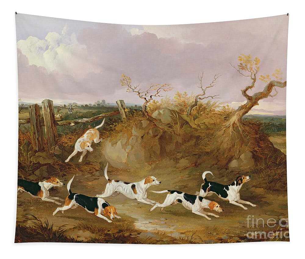 Beagles Tapestry featuring the painting Beagles In Full Cry by John Dalby