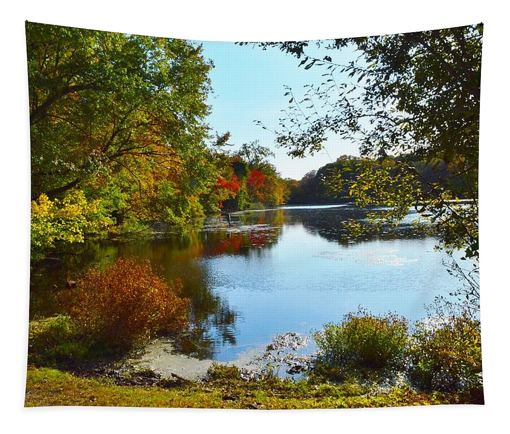 Caleb Smith Preserve Tapestry featuring the photograph Willow Pond, Caleb Smith Preserve by Stacie Siemsen