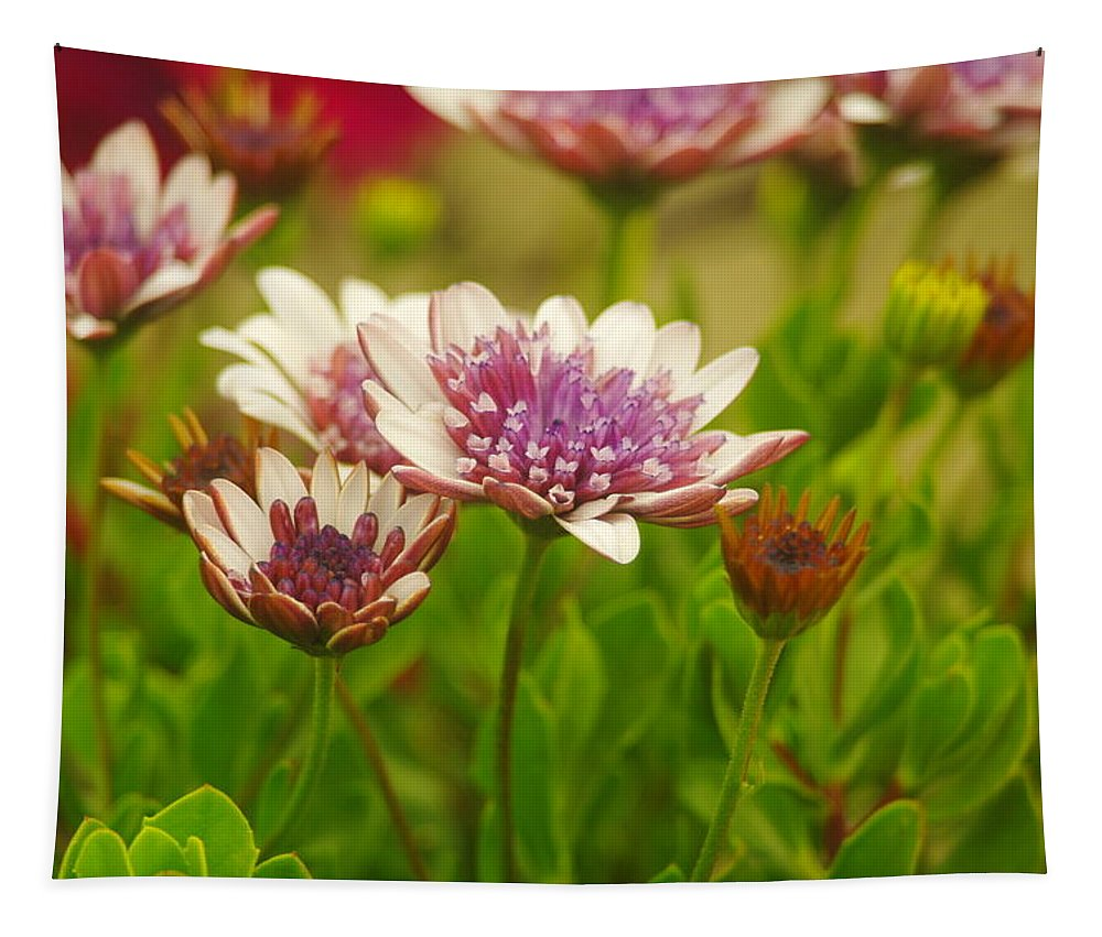 Flower Tapestry featuring the photograph Beautiful Boquet by Jeff Swan