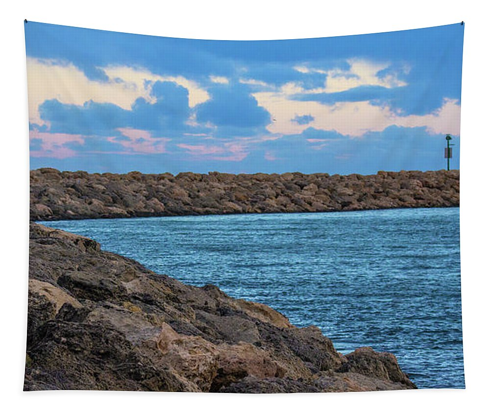 Blue Tapestry featuring the photograph Beautiful Day Out by Tania Read