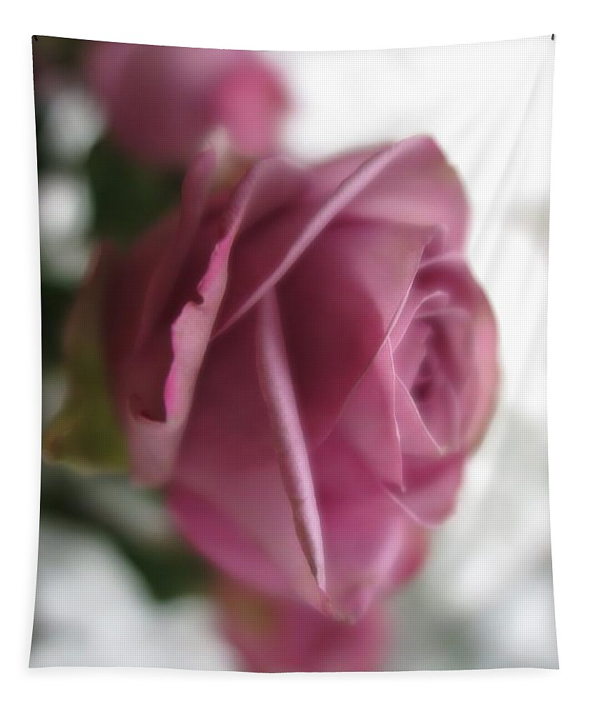 Floral Tapestry featuring the photograph Beautiful Lavender Rose 3 by Tara Shalton