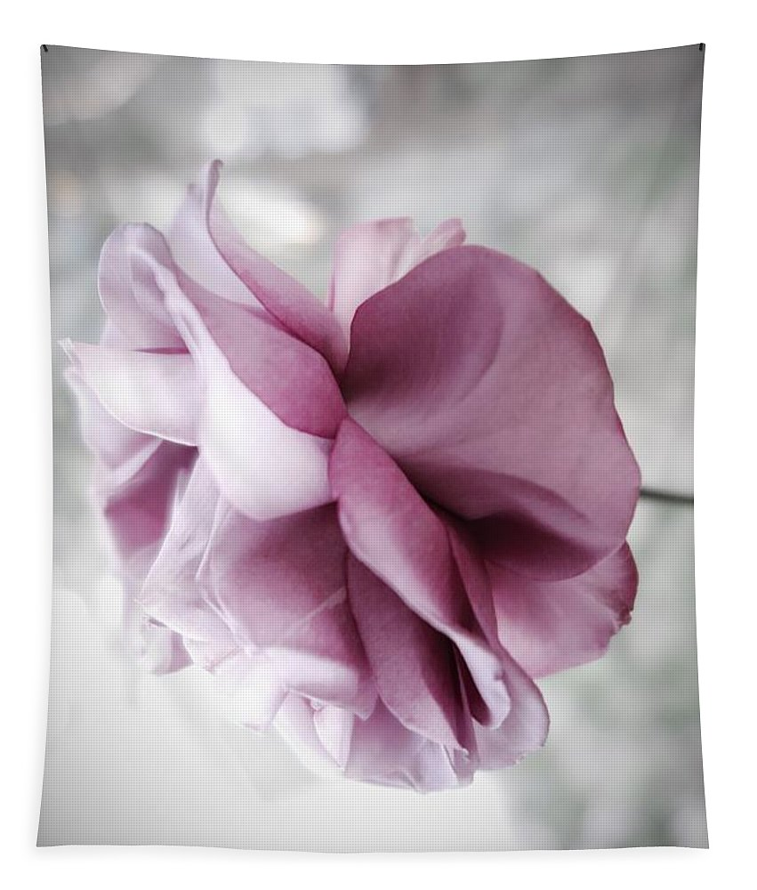 Floral Tapestry featuring the photograph Beautiful Lavender Rose by Tara Shalton