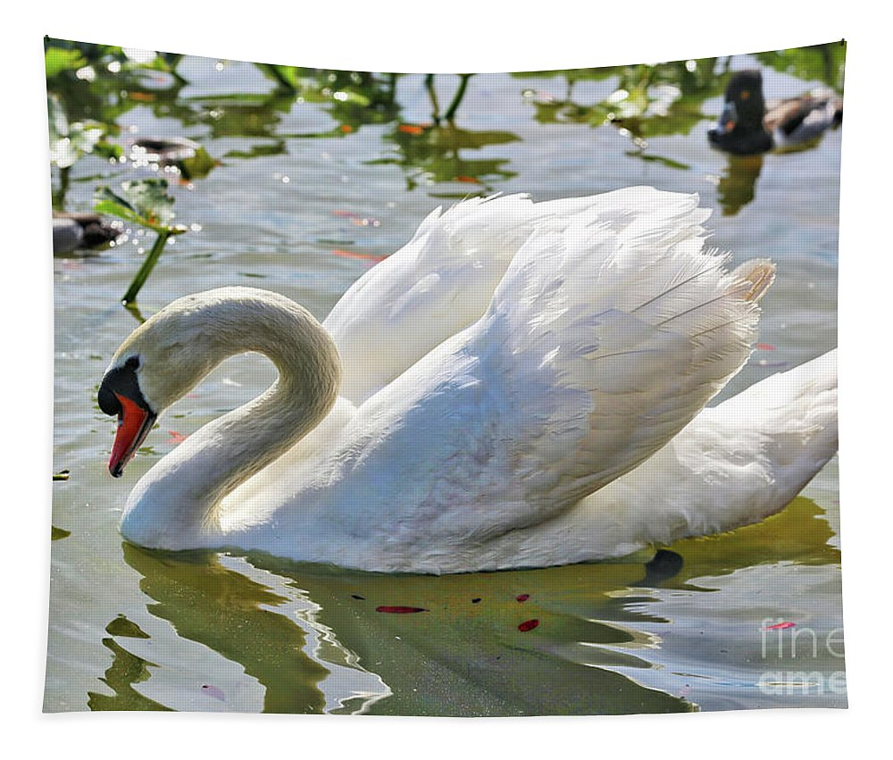 Swan Tapestry featuring the photograph Beautiful Swan by Carol Groenen