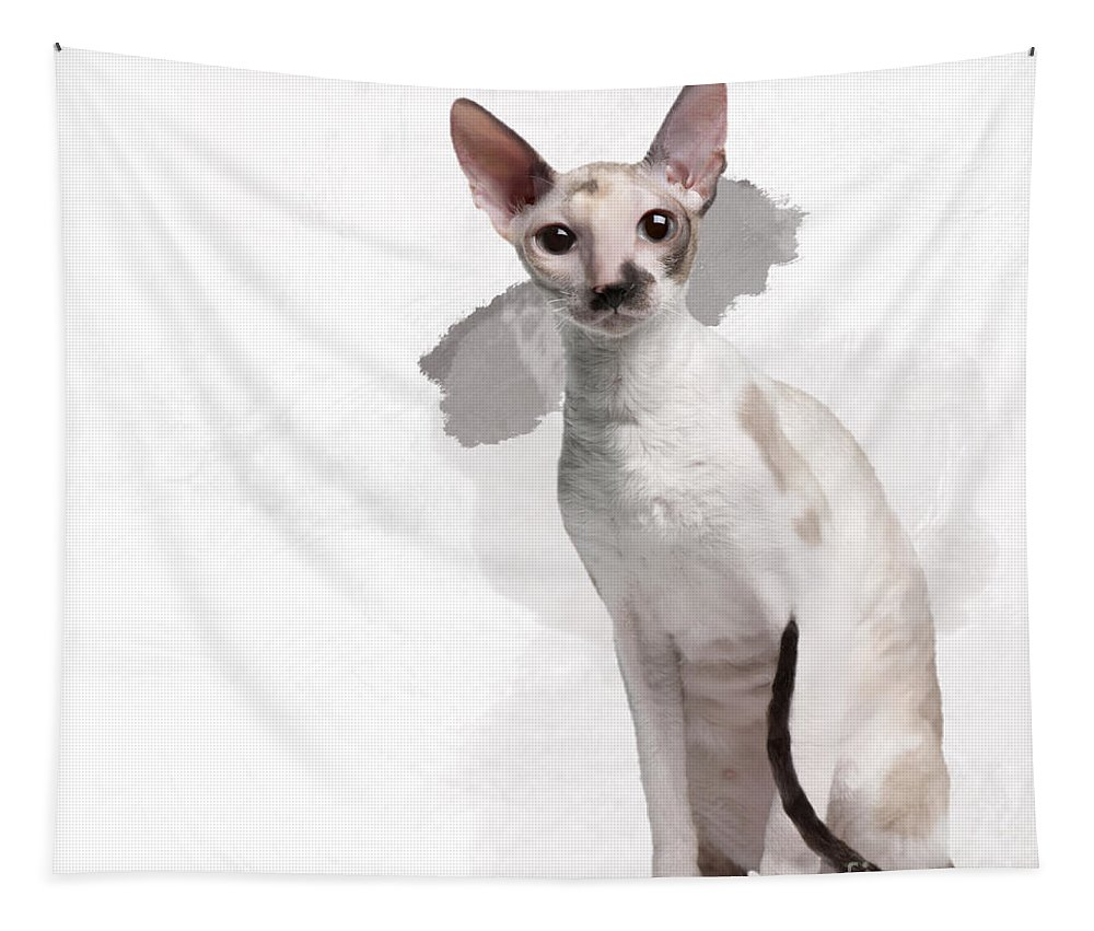 Imia Design Tapestry featuring the digital art Beautiful Two-color Eyes Cornish Rex by Maria Astedt