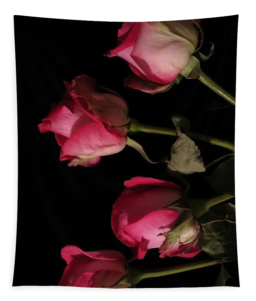 Floral Tapestry featuring the photograph Beautiful Two Tone Roses 6 by Tara Shalton