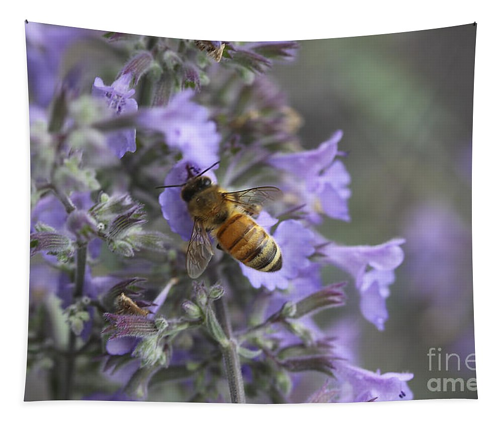 Flowers Tapestry featuring the photograph Beauty And The Bee by Deborah Benoit