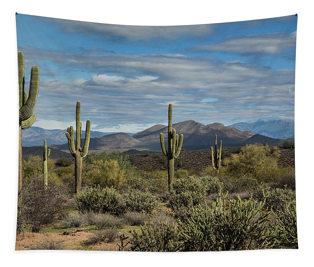 Arizona Tapestry featuring the photograph Beauty Of The Sonoran by Saija Lehtonen