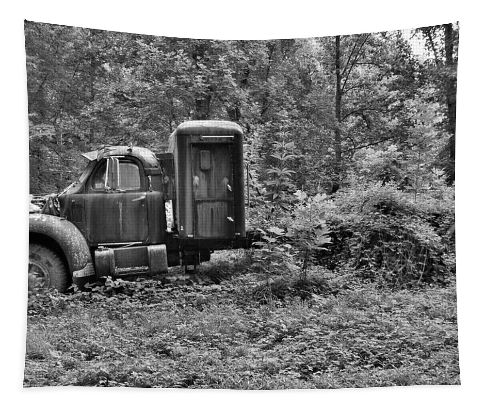 Becoming A Part Of The Landscape Black And White Tapestry featuring the photograph Becoming A Part Of The Landscape Black And White by Lisa Wooten