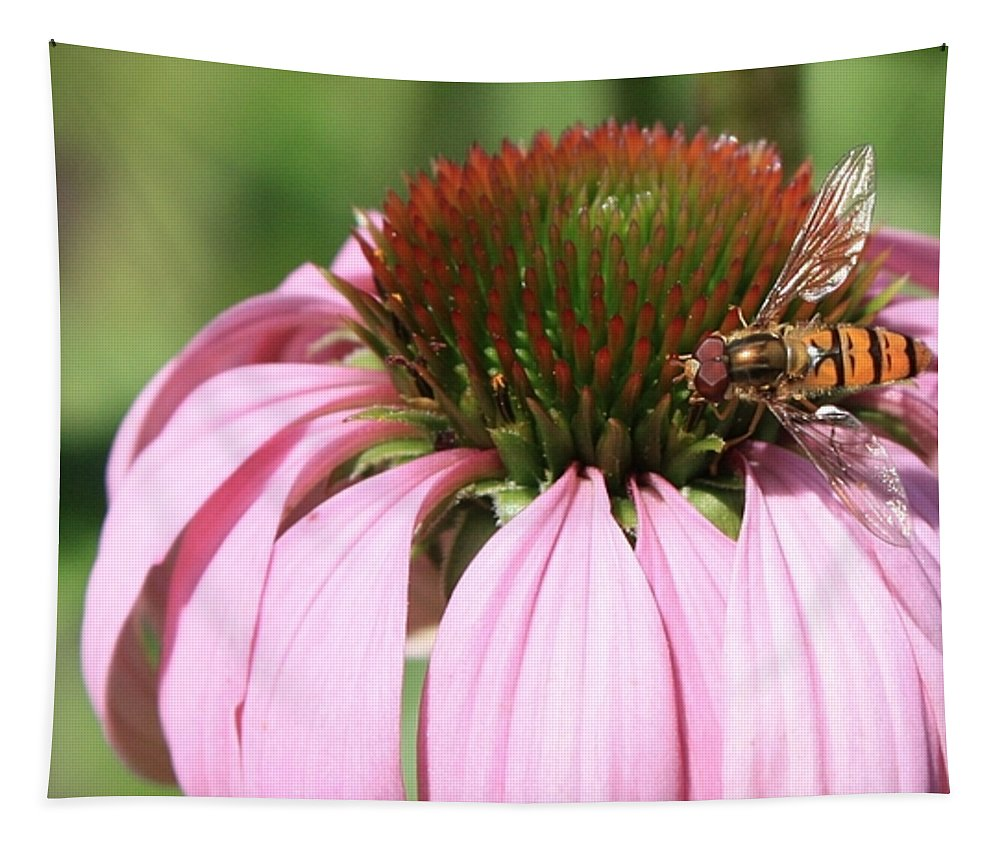 Echinacea Tapestry featuring the photograph Bee On Echinacea by Carol Groenen