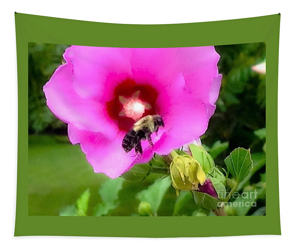 Photograph Tapestry featuring the photograph Bee On Edge Of A Hibiscus Flower by Debra Lynch