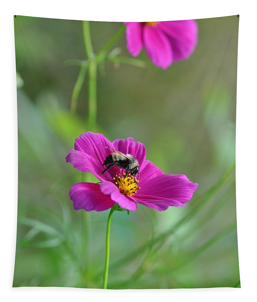 Bee Tapestry featuring the photograph Bee On Flower by Barbara Treaster