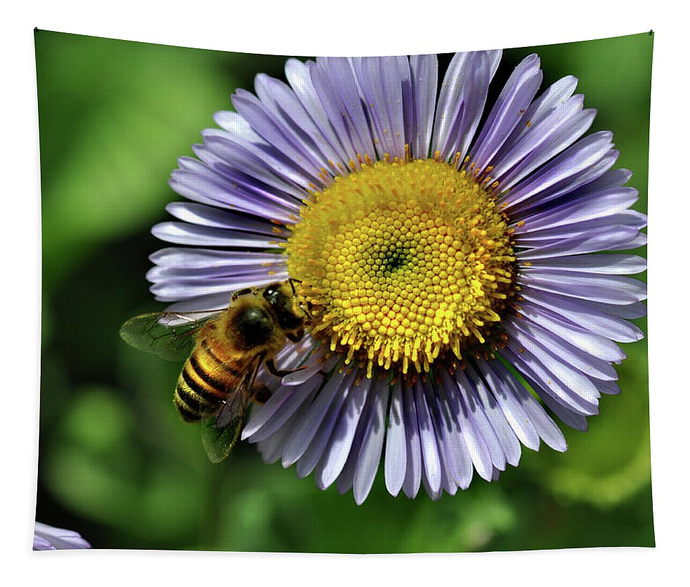 Insect Tapestry featuring the photograph Bee On Purple Petals by Barbara Treaster