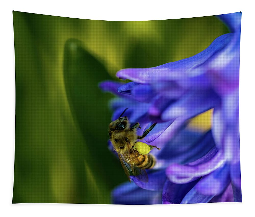 Hyacinth Tapestry featuring the photograph Bee On The Hyacinth by Jay Stockhaus
