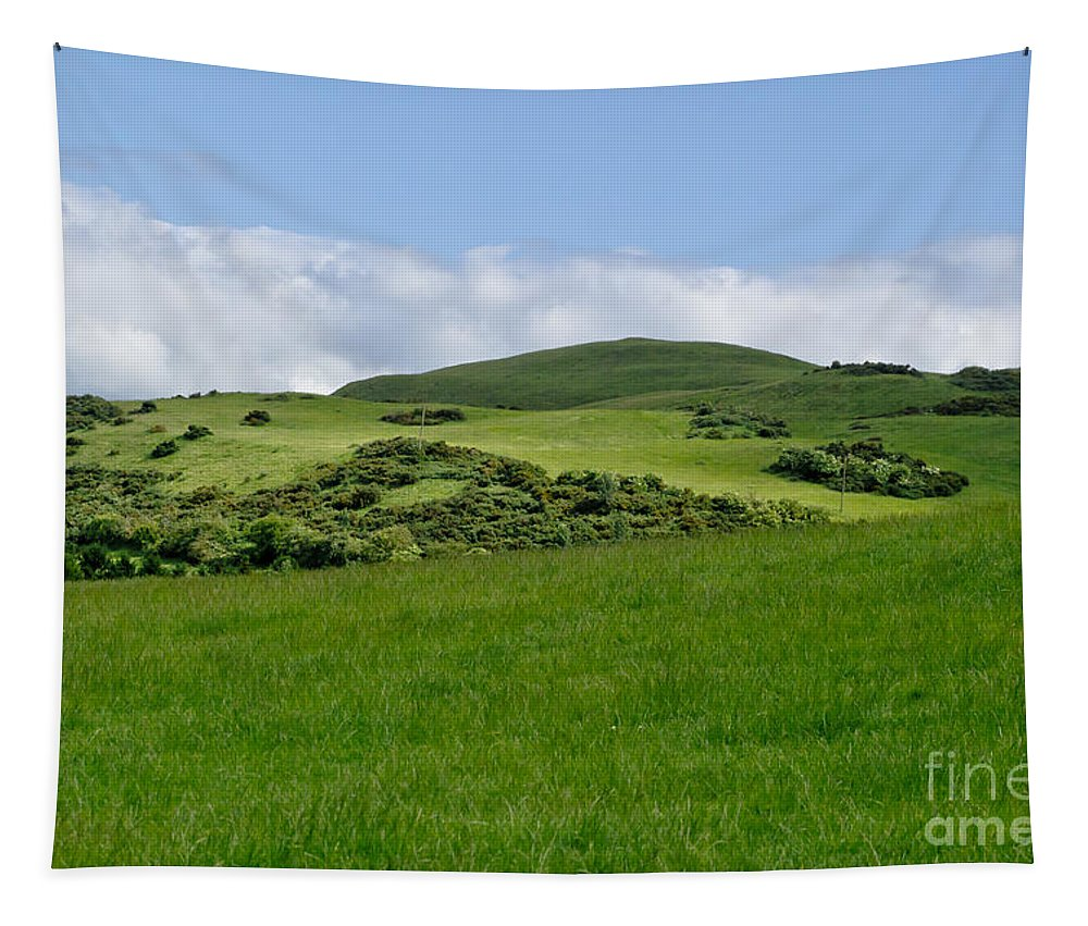 Beecraigs Tapestry featuring the photograph Beecraigs Hills. by Elena Perelman