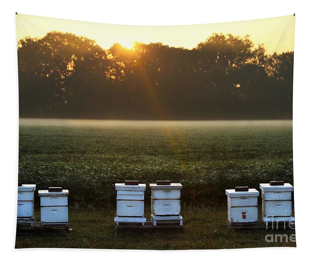 Sunrise Tapestry featuring the photograph Beehives At Sunrise by Catherine Sherman