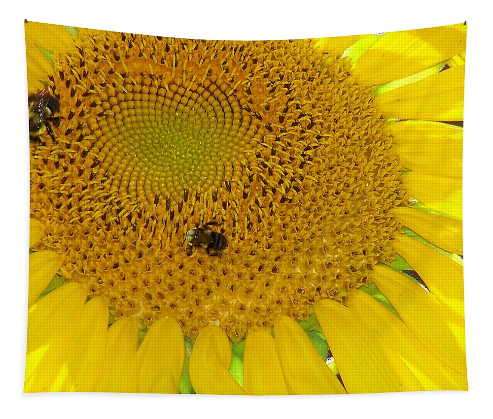 Sunflower Tapestry featuring the photograph Bees Share A Sunflower by Sandi OReilly