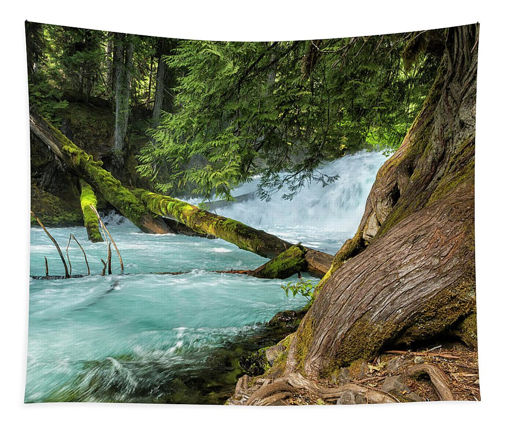 Mckenzie River Tapestry featuring the photograph Below The Falls by Belinda Greb