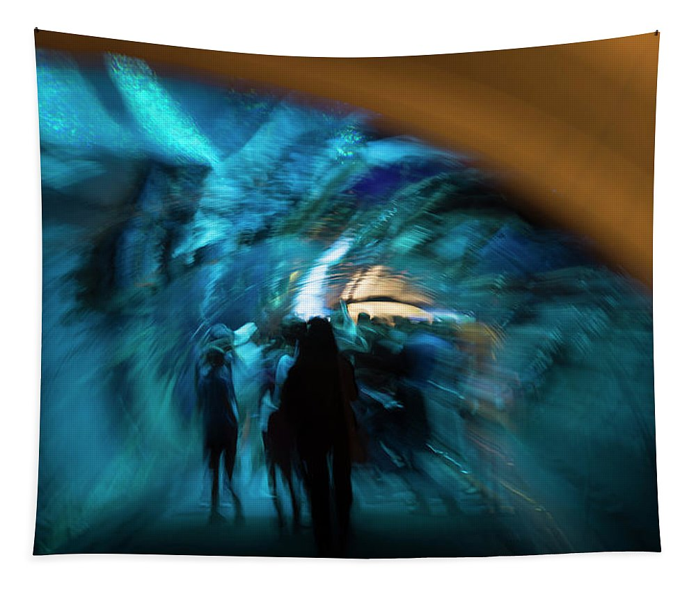 Beneath Tapestry featuring the photograph Beneath And Beyond by Alex Lapidus