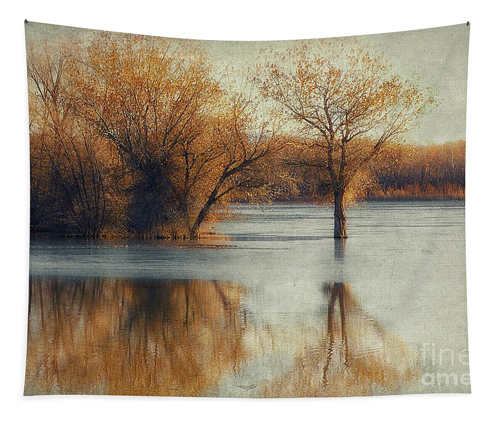 Bosque Del Apache Tapestry featuring the photograph Beside Still Waters-color by Priscilla Burgers