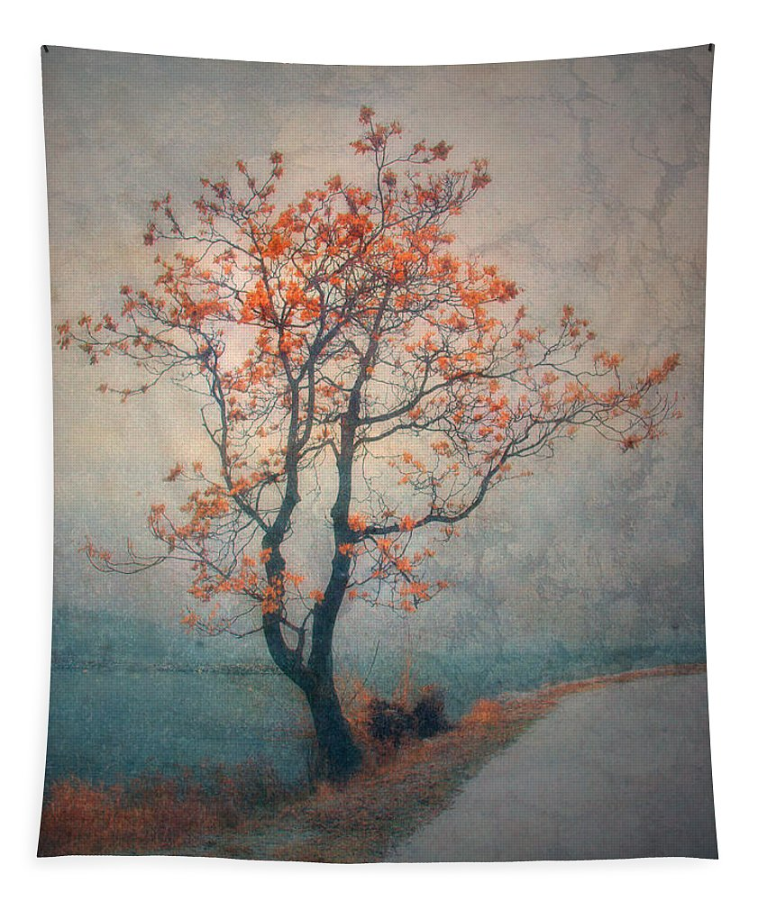 Seasons Tapestry featuring the photograph Between Seasons by Tara Turner