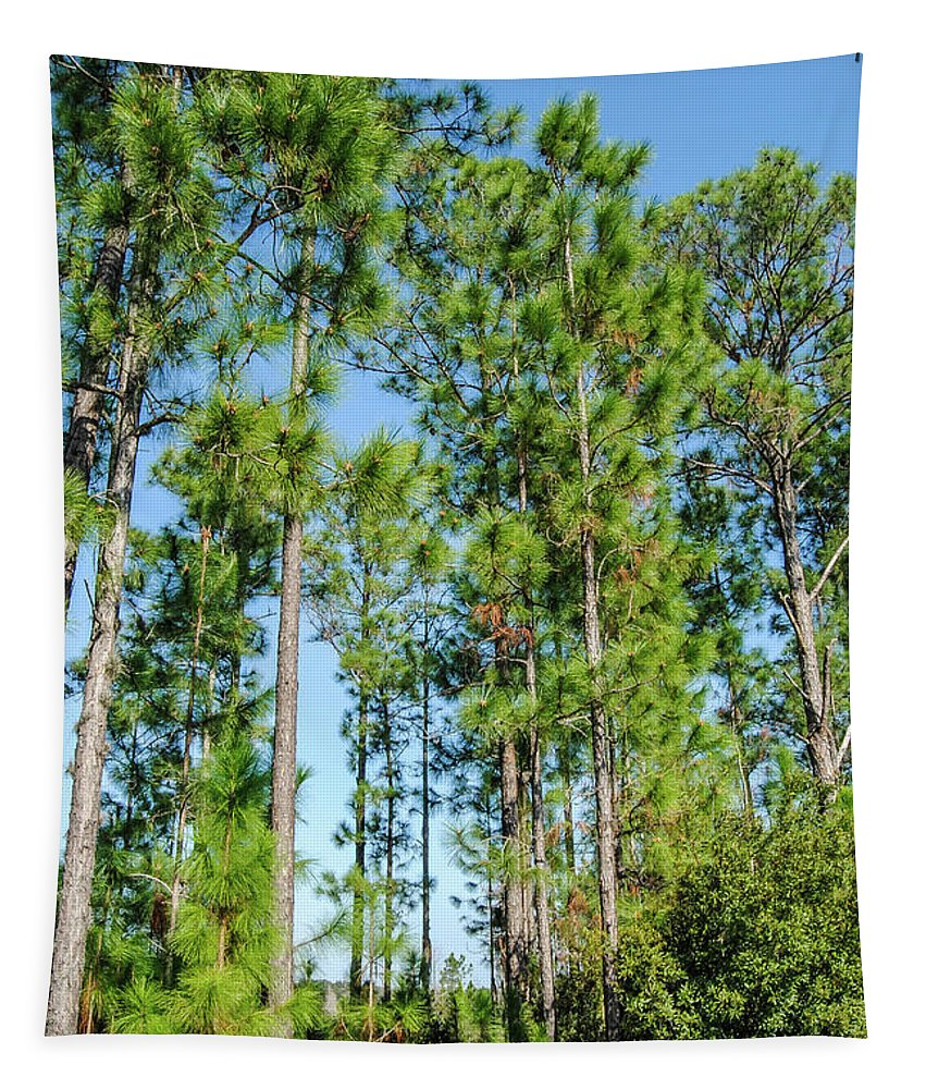 Nature Tapestry featuring the photograph Slash Pines by Pamela Williams