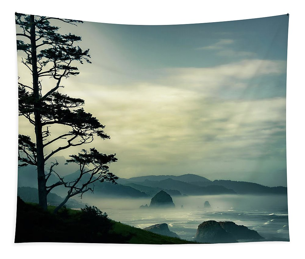 Beach Tapestry featuring the photograph Beyond The Overlook Tree by Don Schwartz