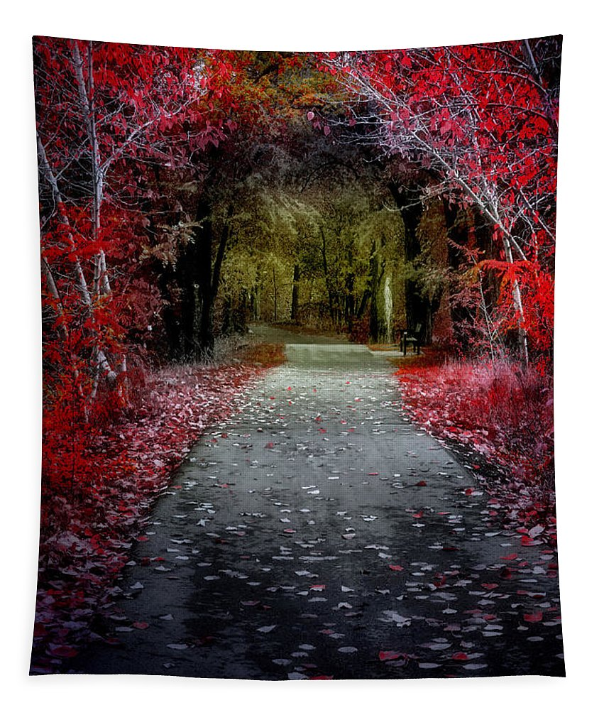 Path Tapestry featuring the photograph Beyond The Red Leaves by Tara Turner