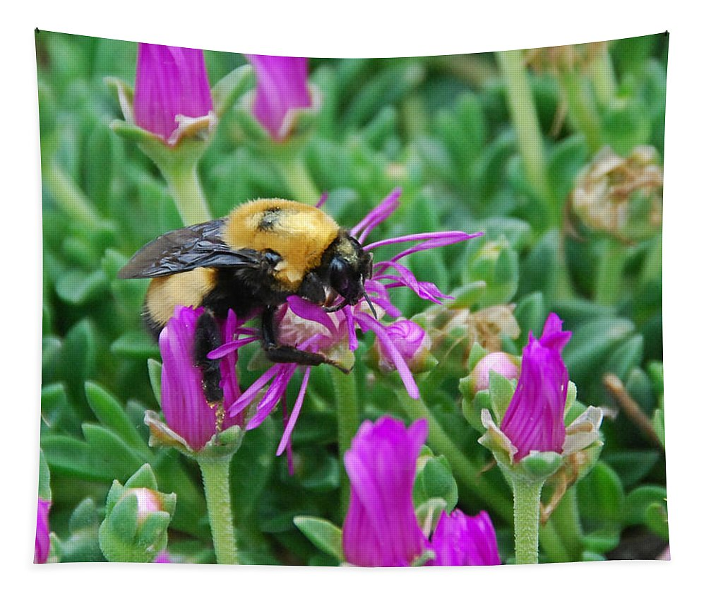 Bumble Bee Tapestry featuring the photograph Big Bumblebee by Katherine Nutt