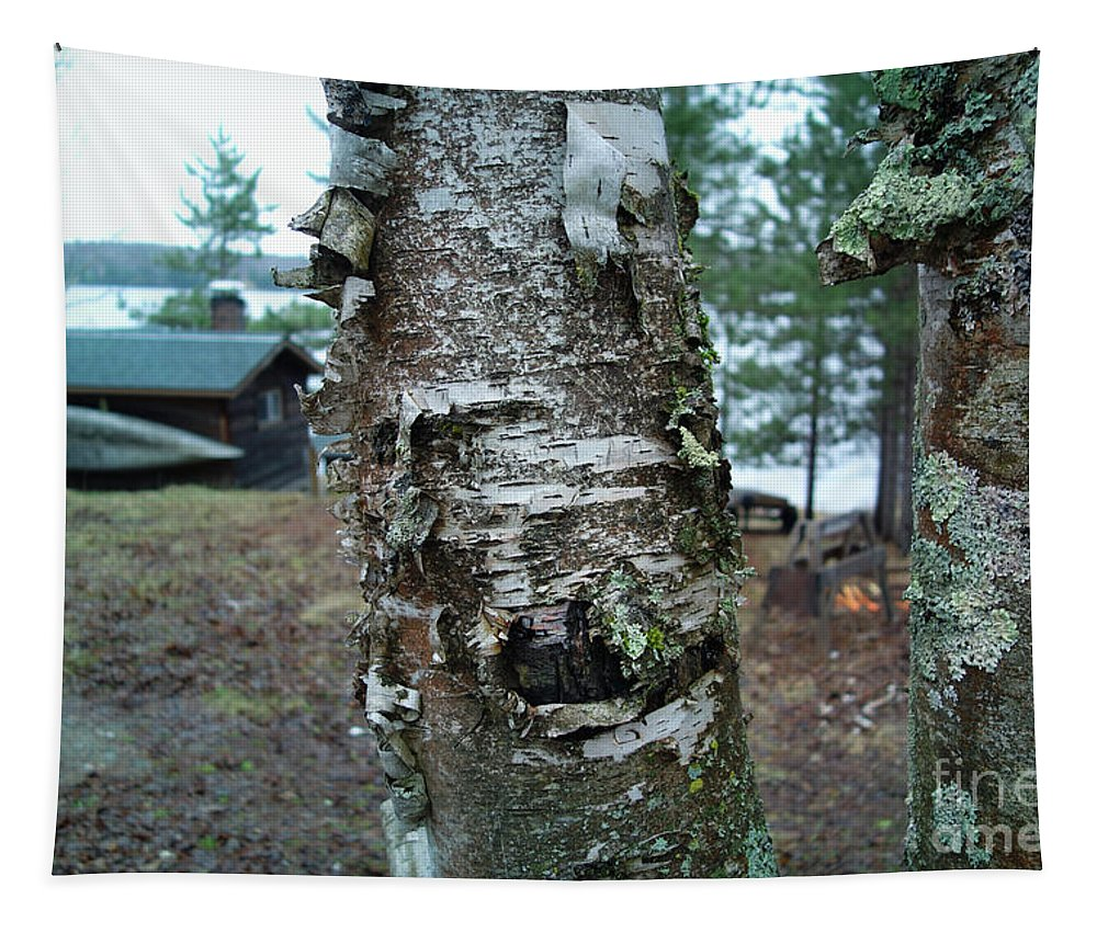 Birch Bark 3 Tapestry featuring the photograph Birch Bark 3 by Jacqueline Athmann