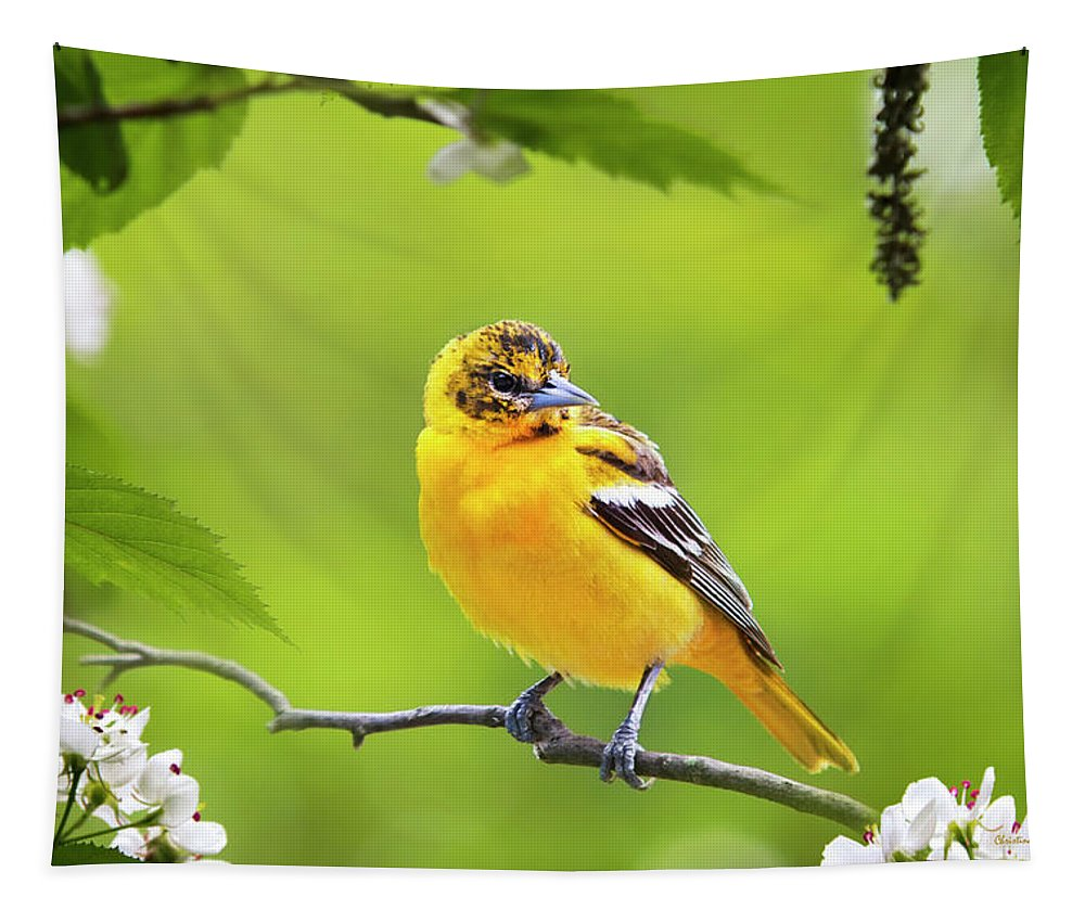 Bird Tapestry featuring the photograph Bird And Blooms - Baltimore Oriole by Christina Rollo