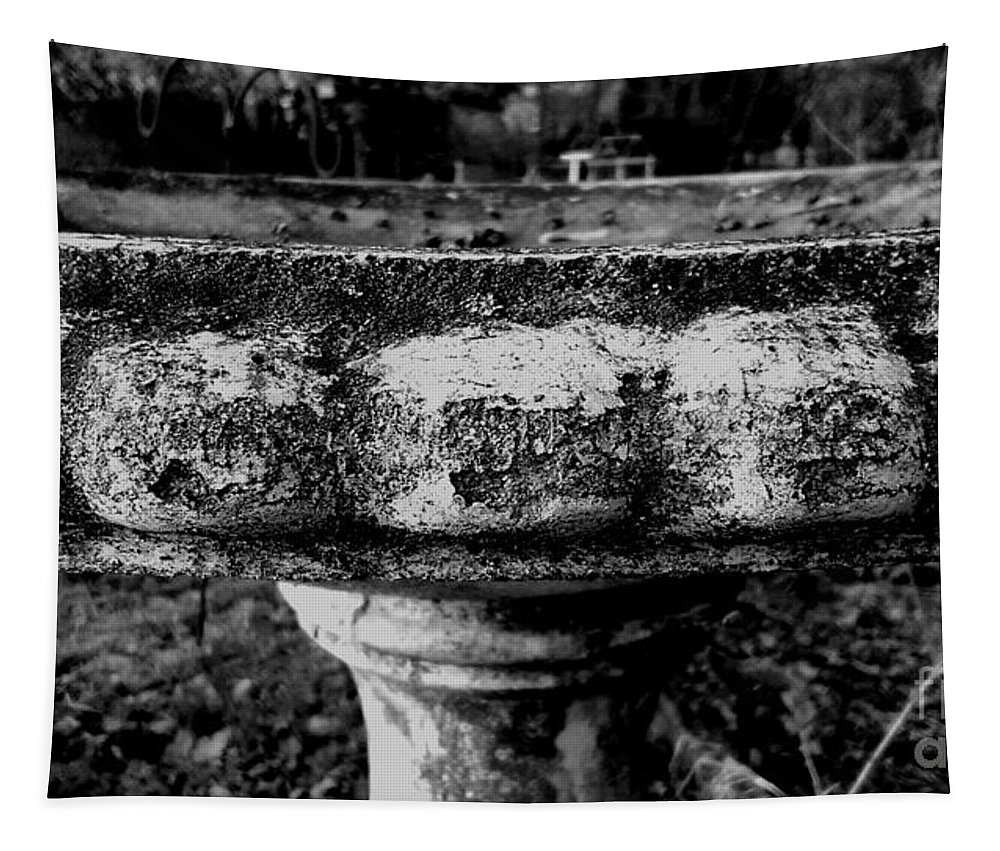 Black And White Photography Tapestry featuring the photograph Birdbath In Black And White by Frank J Casella