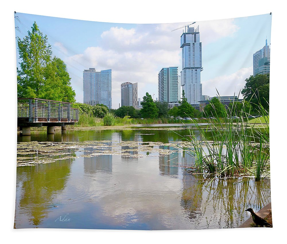 Butler Park Tapestry featuring the photograph Birds Eye View Austin Under Construction Square by Felipe Adan Lerma
