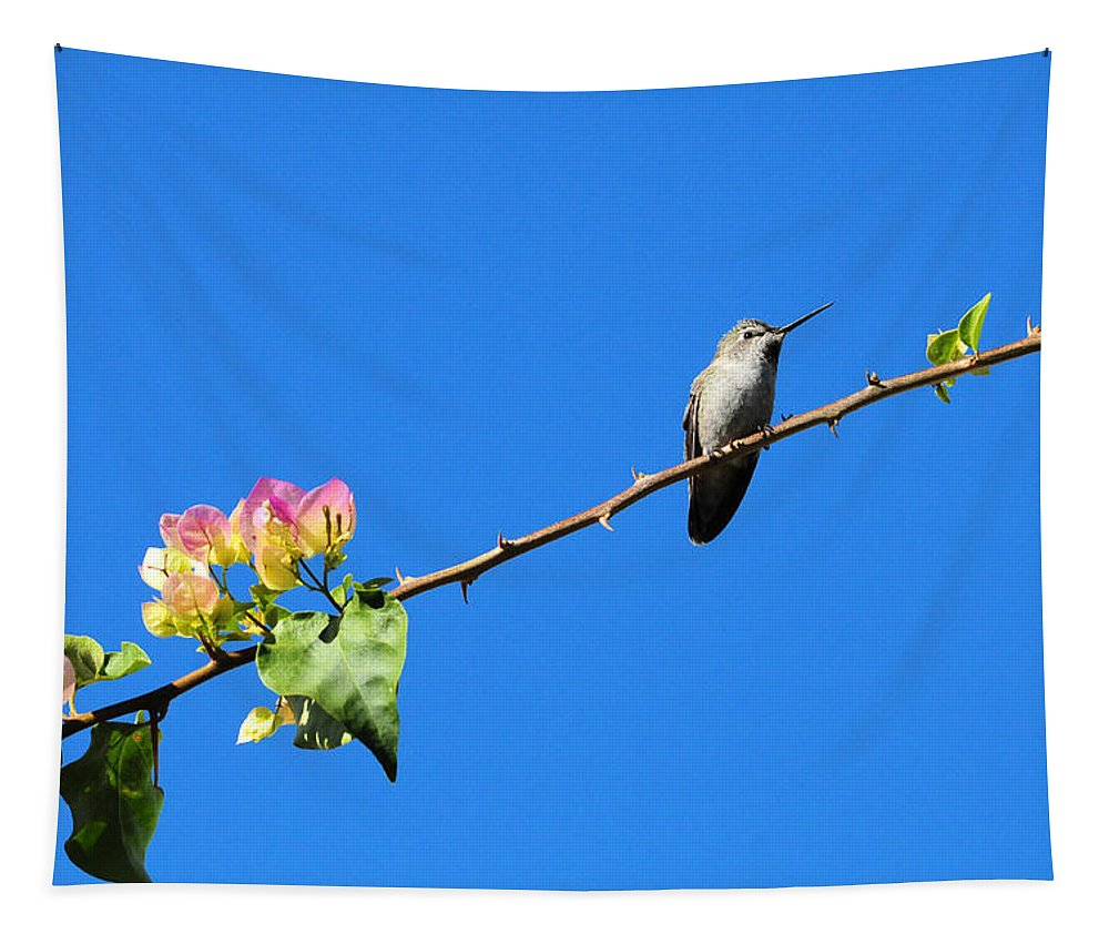 Hummer Tapestry featuring the photograph Bird's Eye View by Lynn Bauer