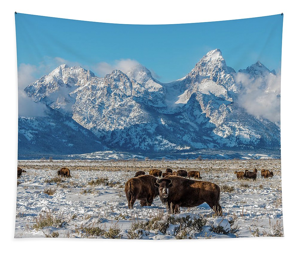 Bison Tapestry featuring the photograph Bison At The Tetons by Yeates Photography