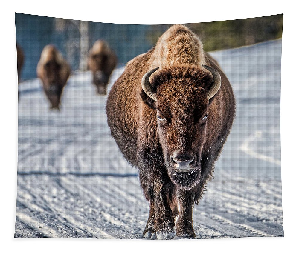 Yellowstone Tapestry featuring the photograph Bison In The Road - Yellowstone by Stuart Litoff