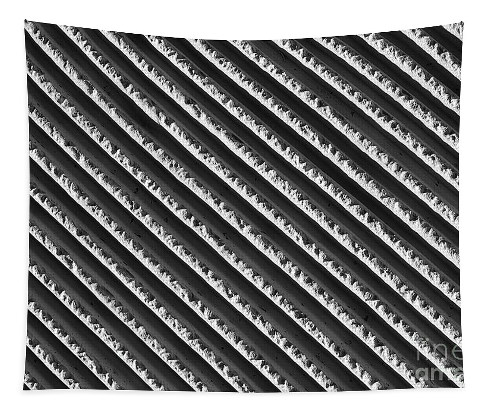 Wall Tapestry featuring the photograph Black And White Abstract Lines by Tom Gari Gallery-Three-Photography