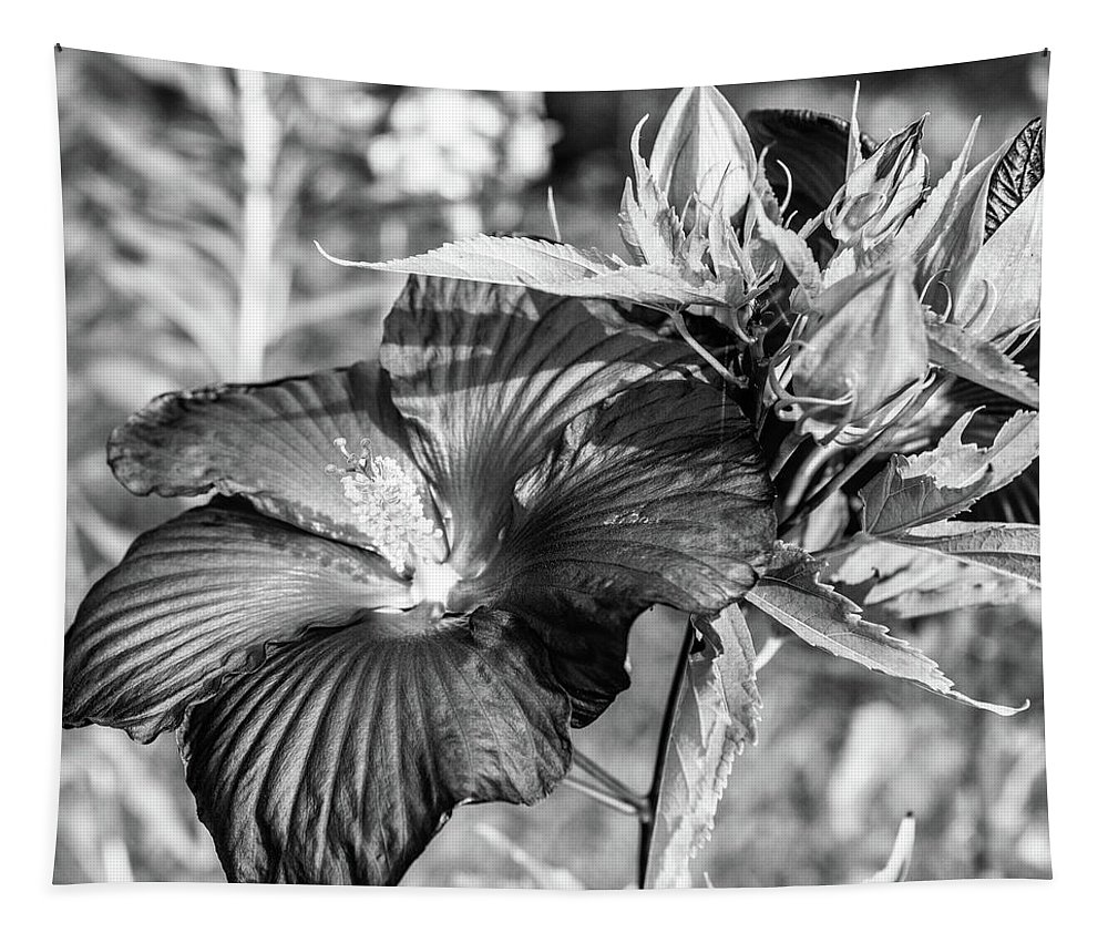 Flower Tapestry featuring the photograph Black And White Hibiscus by Sherman Perry